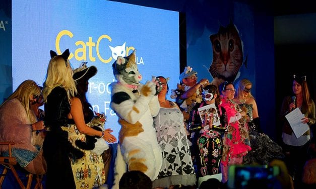 Catcon LA, not just for cat ladies anymore