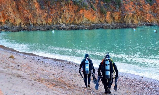 Should You Try Meetup for Scuba Diving Adventures