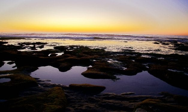 La Jolla Low Tide Sunset