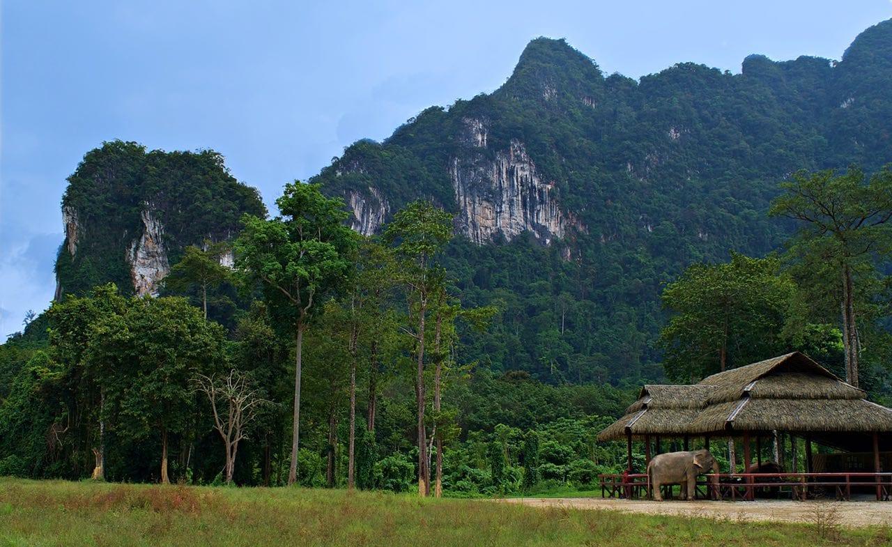 Elephant-Hills-Elephant-Sanctuary