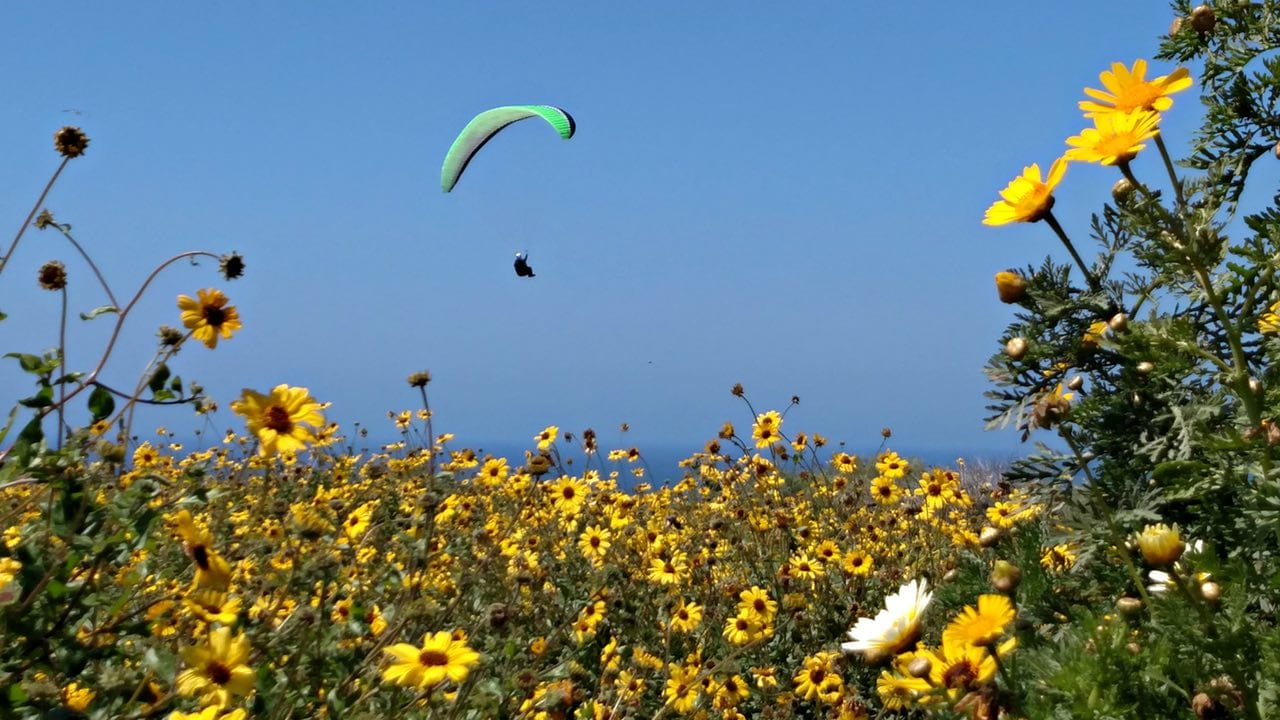 La Jolla Gliderport during spring bloom