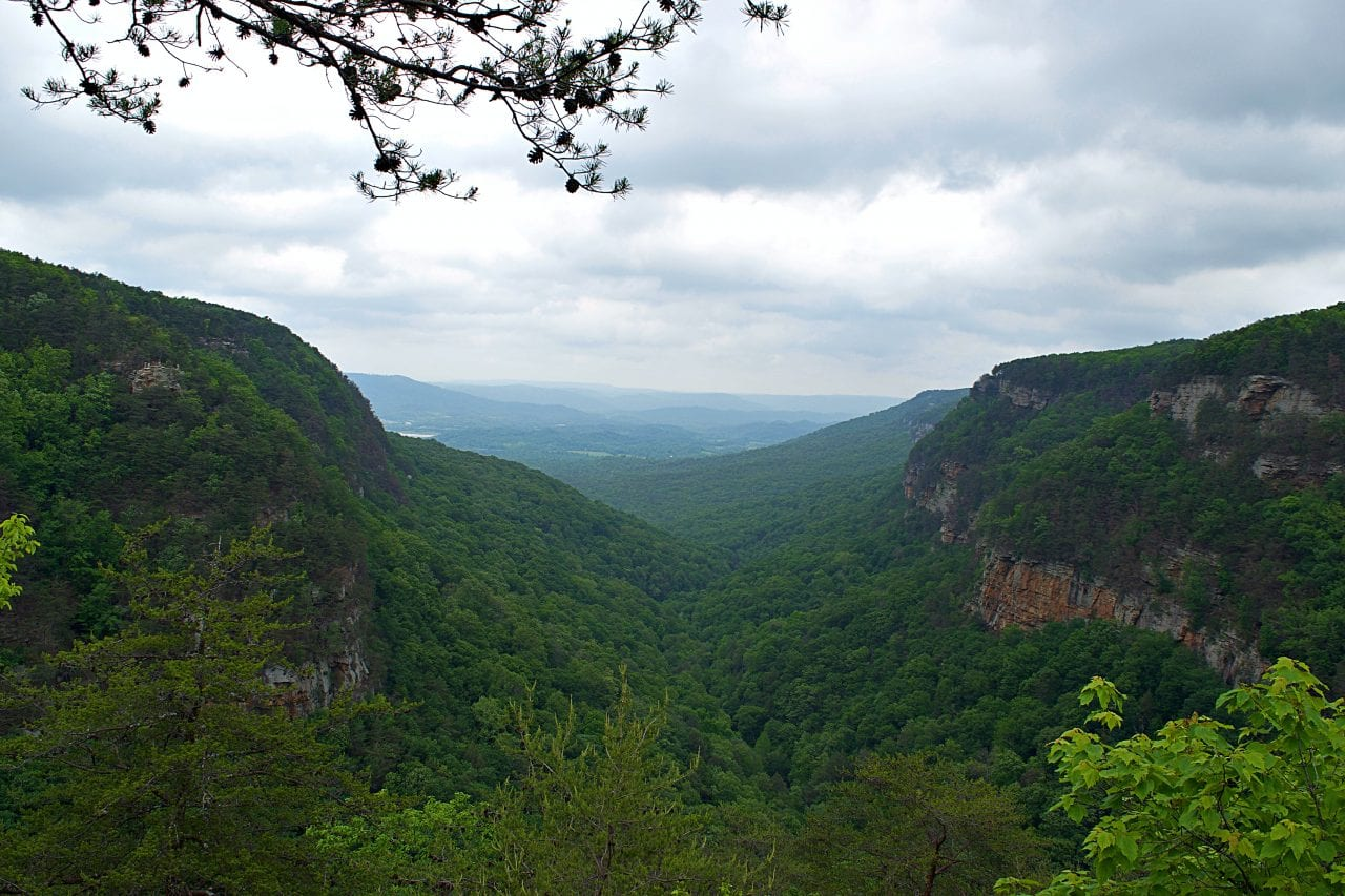Cloudland Canyon overlooks should not be overlooked