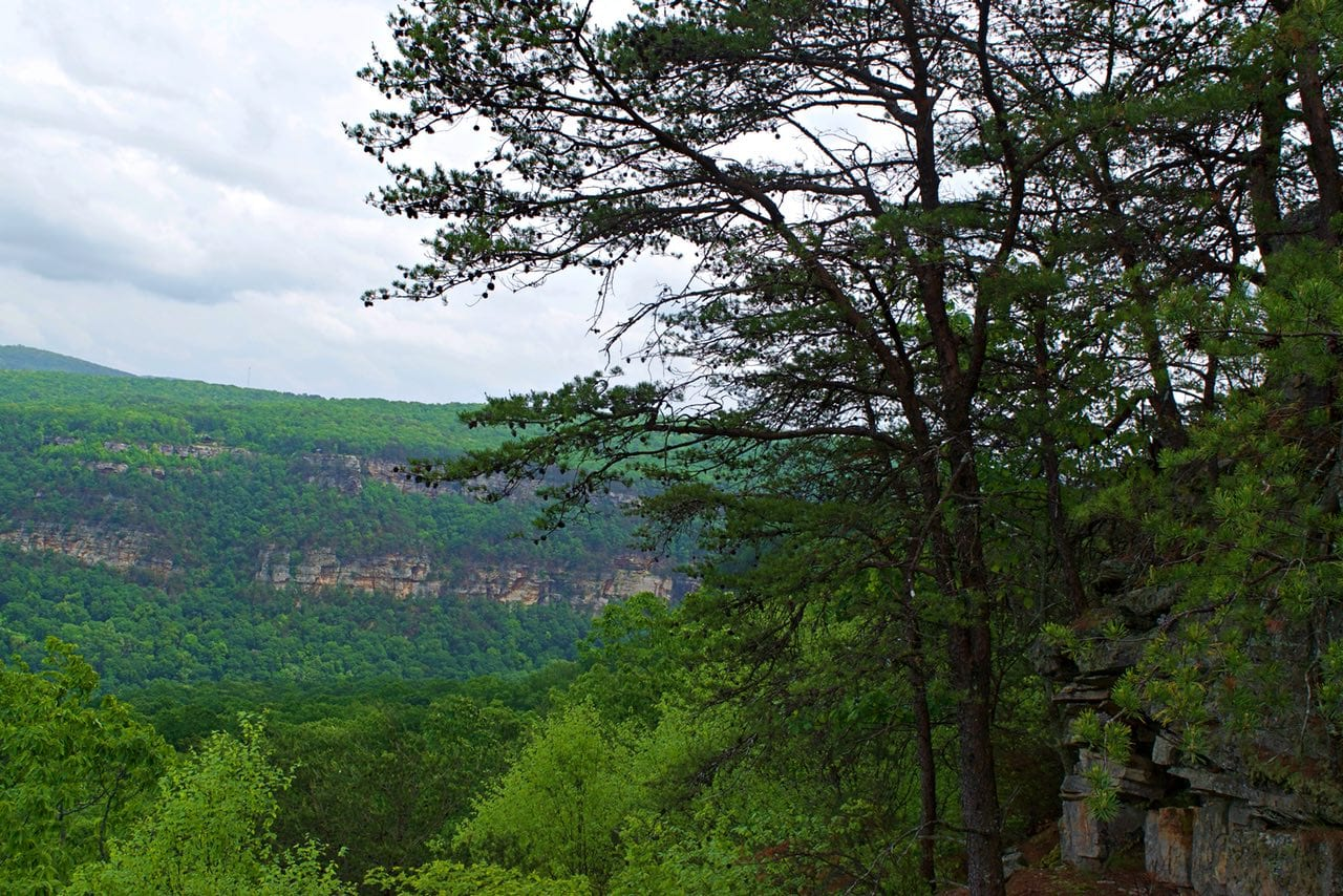 Photo tip. Create variations on the Cloudland Canyon overlook by using foreground objects