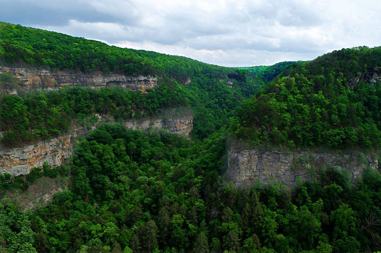 Looking down Cloudland Canyon