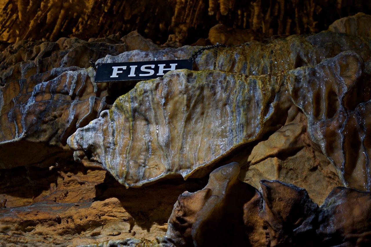 Ruby Fall's Fish Rock formation