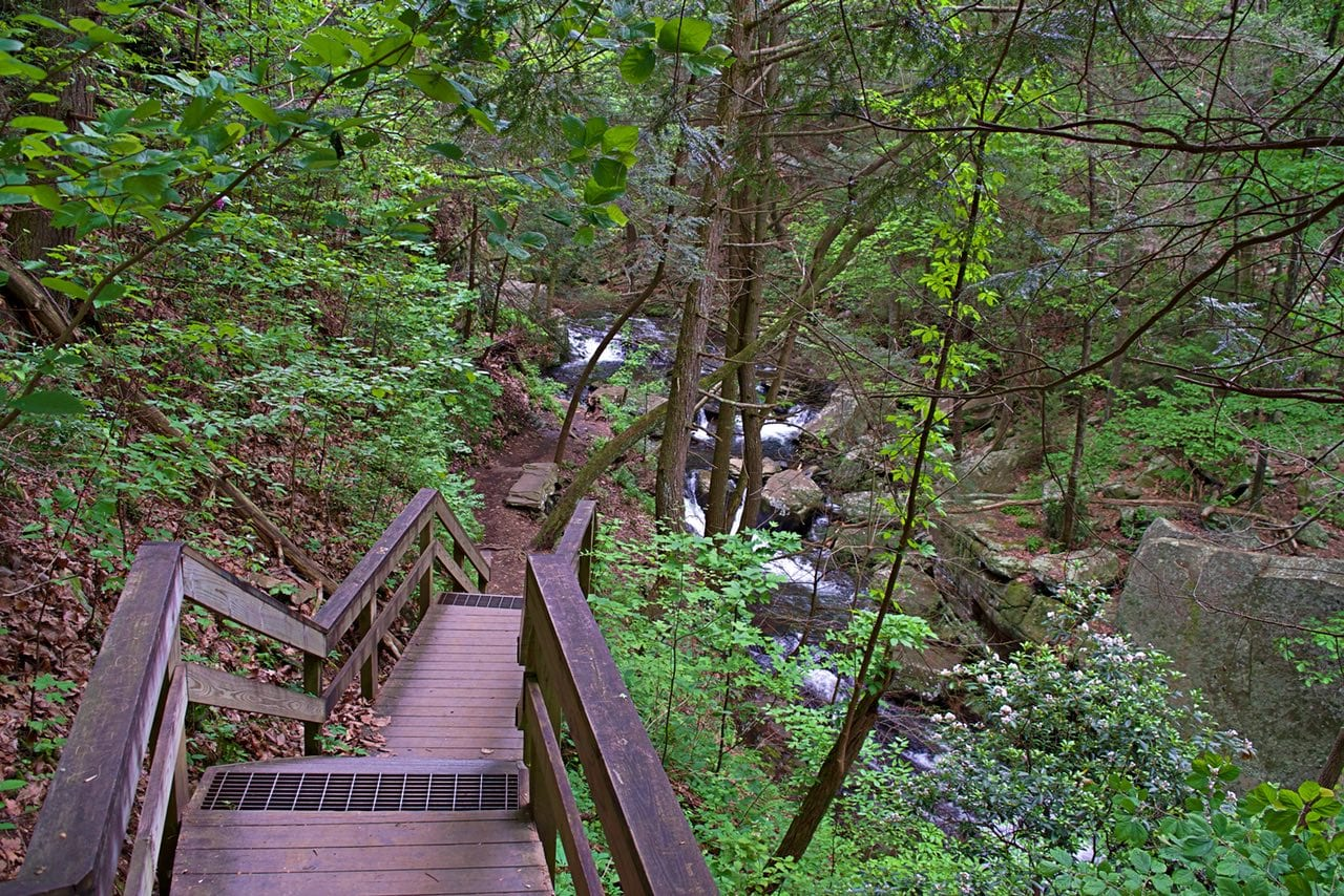 The Waterfall Trail at Cloudland Canyon has its share of staircases