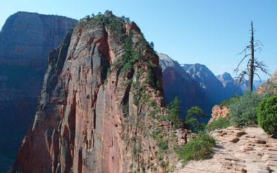Angels Landing: The Best Hike In Zion National Park