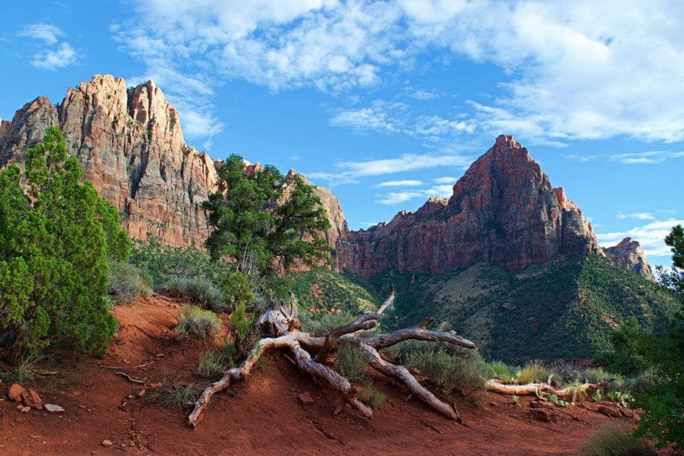 Is Watchman Trail the Easiest Hike in Zion National Park