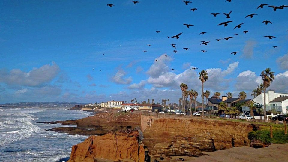 Our photo tour of Sunset Cliffs begins with blue skies and a chance of birds