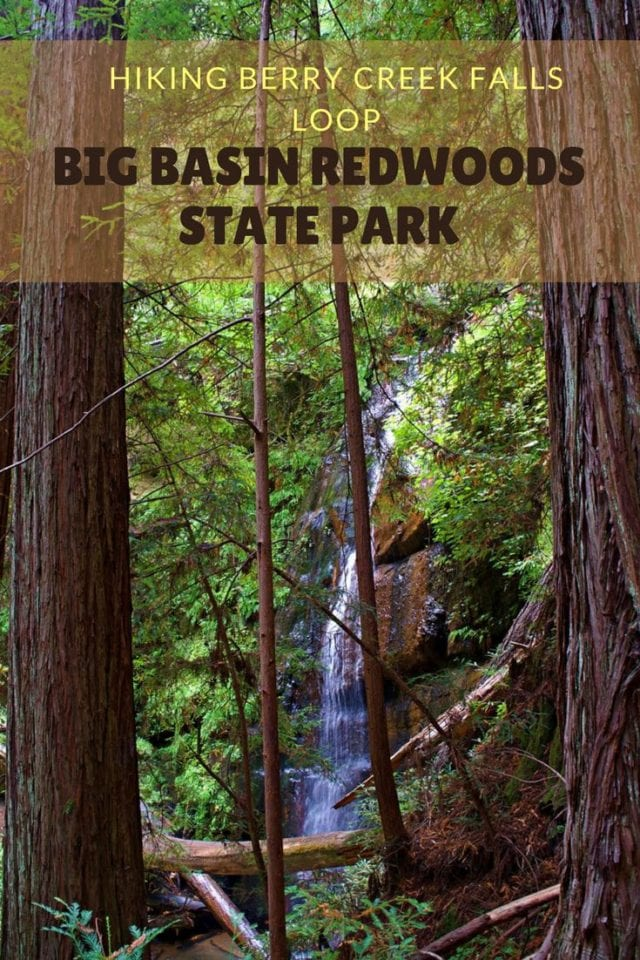 Hiking Berry Creek Falls Loop @ Big Basin Redwoods State Park