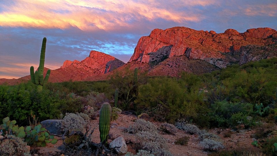 We learned all about sun protection hiking in Tucson