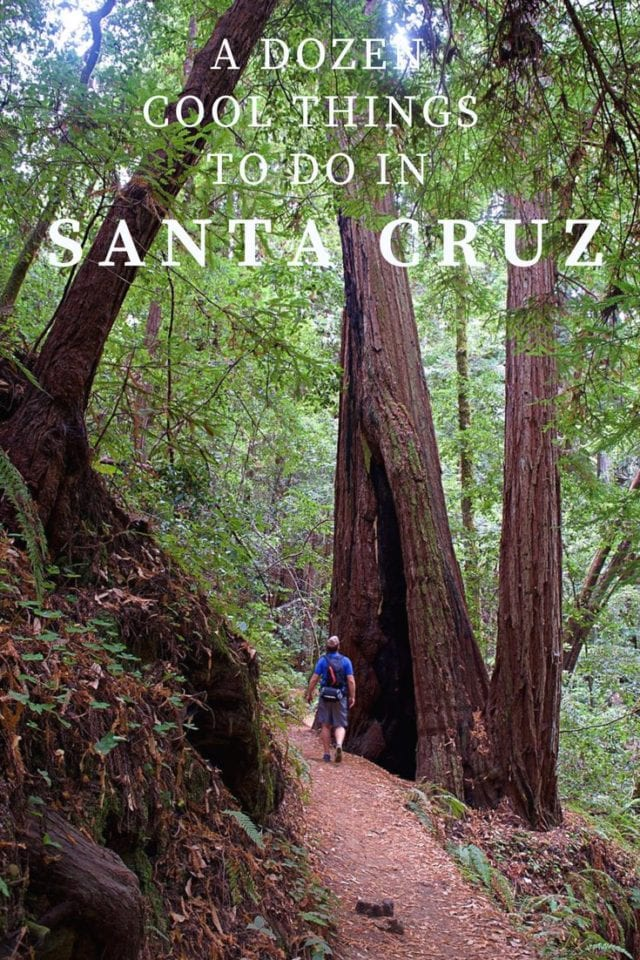 A Dozen Cool Things to Do in Santa Cruz