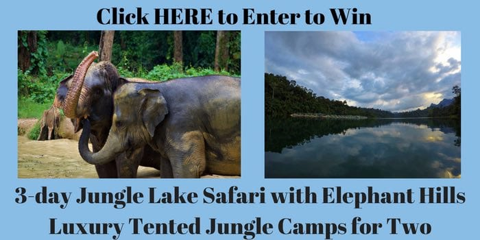 Enter to Win Luxury Glamping Experience in Thailand