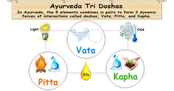 This chart explains the relationships between the three Doshas in Ayurveda