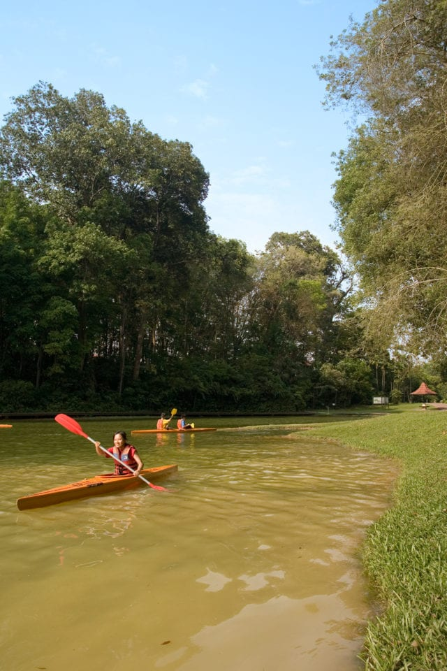 Kayaking in Signapore
