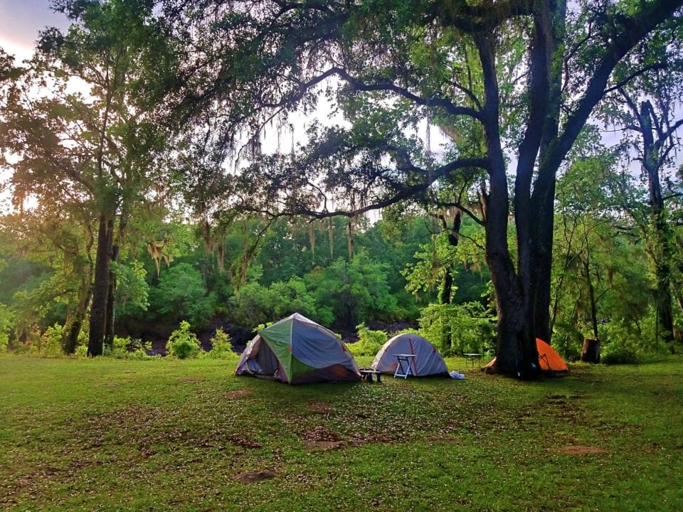 Suwannee-River-State-Park
