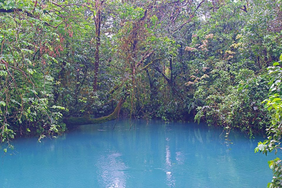 Rio Celeste - the blue river