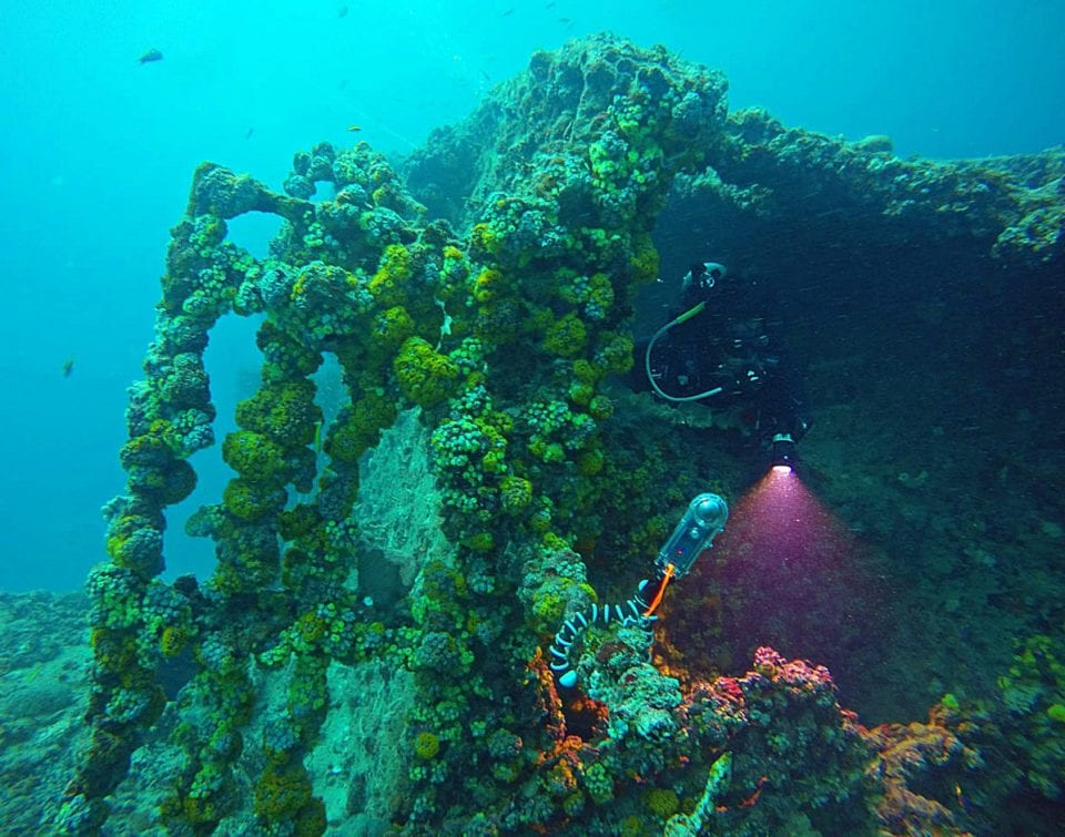 Diver exploring Ancient Mariner dive site (by Kristi Paterakis)