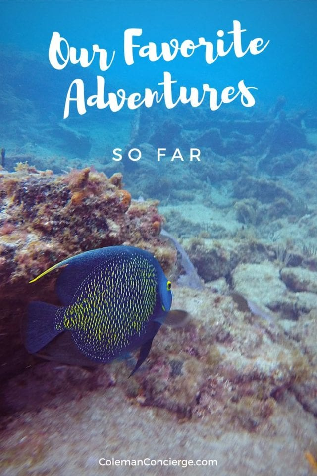 We believe in finding amazing adventures for ordinary people. Over the last 2 years, we have experienced adventures around the world and written about them. Check out some of our favorite experiences so far. #Travel #Adventure #BucketList