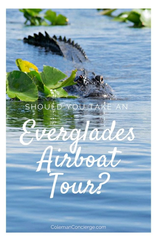 Looking for an airboat tour in the Everglades but afraid of theatrics or worried about animal ethics? We found Everglades Holiday Park to be authentically concerned about their magnificent wetlands, especially the alligators. Learn more about this unique tour here. #Everglades #Florida #AirboatTour #FortLauderdale