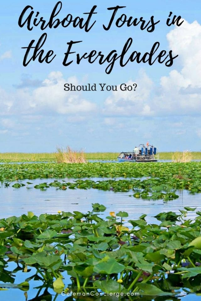 If you want to experience something wild, wonderful, and uniquely Florida? Consider taking an airboat tour of the Everglades. This is the American tropics, home to an ecosystem like no other. Click pin to learn more. #Everglades #Florida #AirboatTour #FortLauderdale