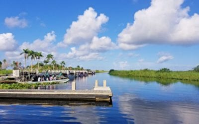 Airboat Tours in the Everglades – Should you go?