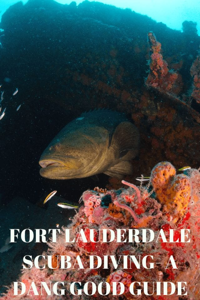 Ft Lauderdale scuba diving- the most fun you can have with your fins on. Our guide and map highlight 23 miles of natural coral reef & over 100 shipwrecks.