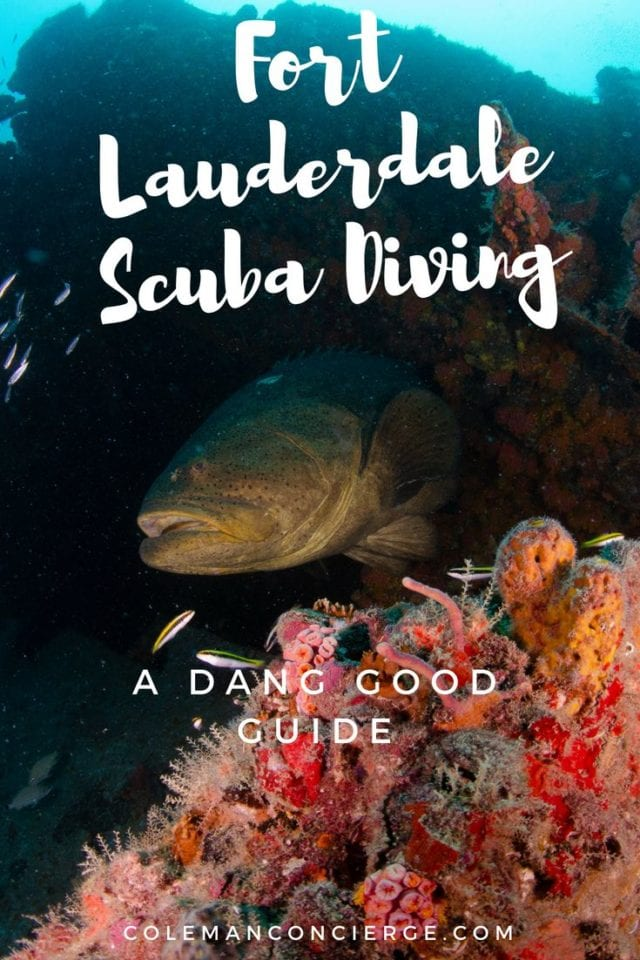 Our dang good guide to Fort Lauderdale Scuba Diving describes dive sites from Boca Raton (Southern Palm Beach County) to Dania Beach (Northern Dade County) and all of Fort Lauderdale / Broward County in between. Take some time to click around our interactive map, loaded with site descriptions, links, photos, and even a few videos. #Scuba #FortLauderdale #Diving #Florida #ScubaDiving