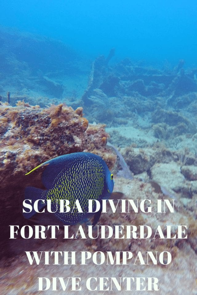 Scuba Diving in Ft Lauderdale - Pompano Beach topped our Florida bucket list for a while with it's spectacular coral reefs and the largest collection of warm-water wrecks in the US. Learn why Pompano Dive Center has earned 5-Stars on Trip Advisor and experience with us Fort Lauderdale's tropical underwater wonders.