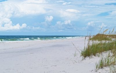 Panama City Beach- 25 Photos to Inspire Your Next Getaway