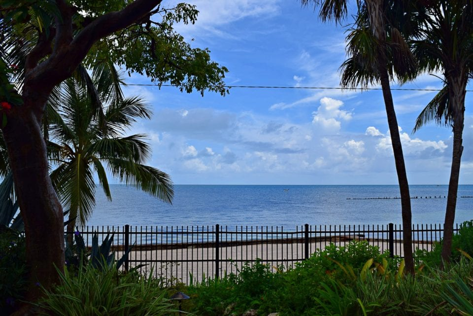 Stunning ocean view from Key West garden