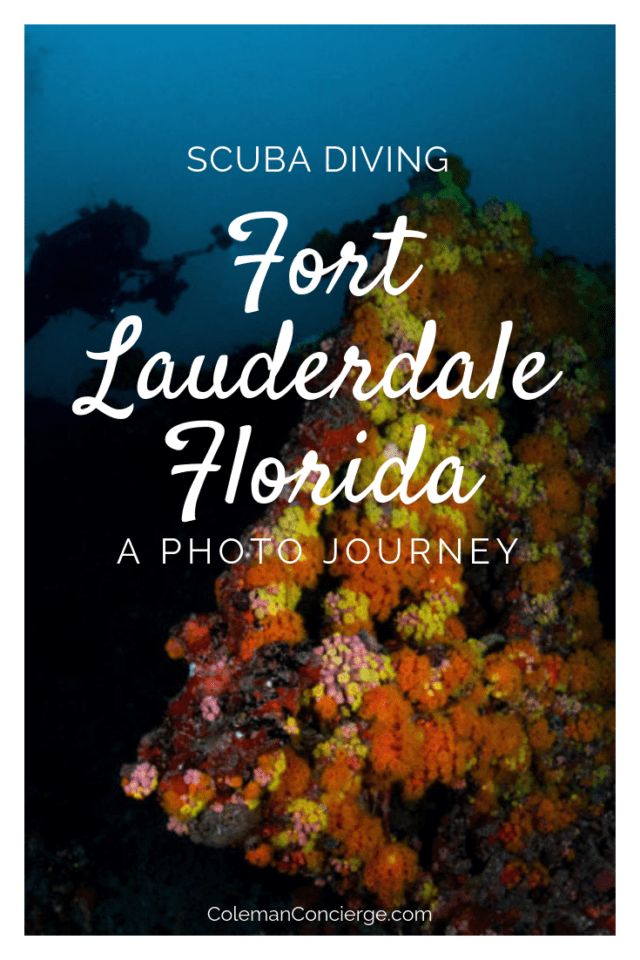 Much of South Florida's finest underwater scenery can be found in Fort Lauderdale. Ft Lauderdale boasts over 23 miles of reef and 100+ shipwrecks, so there is no shortage of things to see and explore. Join us on a photographic journey scuba diving some of South Florida's finest dive sites. #Scuba #FortLauderdale #Diving #Florida #ScubaDiving #UnderwaterPhotography