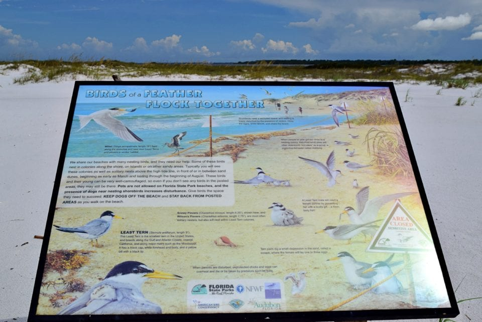 Shell Island bird watching sign