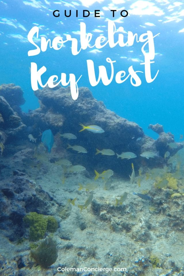 Key West has America's only living barrier reef and the 3rd largest barrier reef in the world. We're sharing the best places to go snorkeling, what to expect at each site, and how to enjoy it responsibly. #KeyWest #Snorkeling #Sustainable Tourism #Florida #TheKeys #EthicalTourism