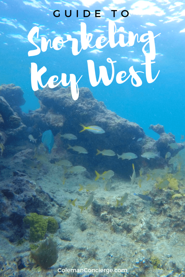 Key West Snorkeling Pin 3