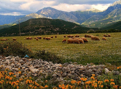 Pastoral Albania Photo by Godo Godaj (Flicker)