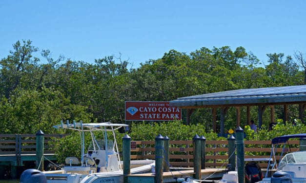 Cayo Costa – The Complete Guide to Florida's Hidden Gem