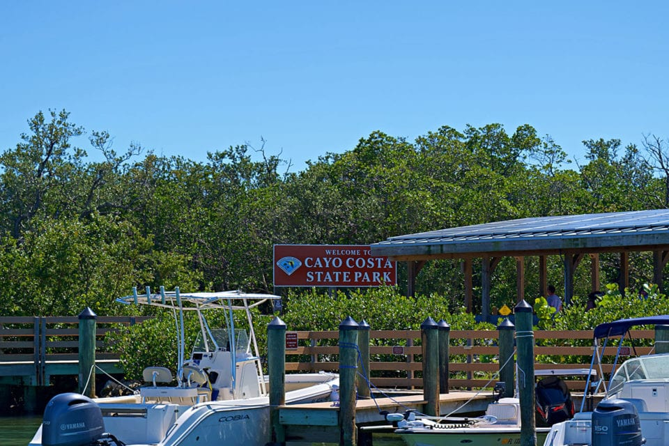 Florida's best shelling at Cayo Costa State Park
