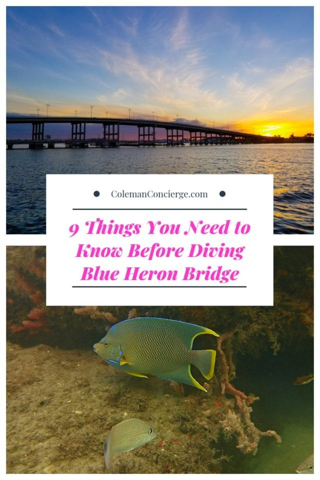Photos of Blue Heron Bridge