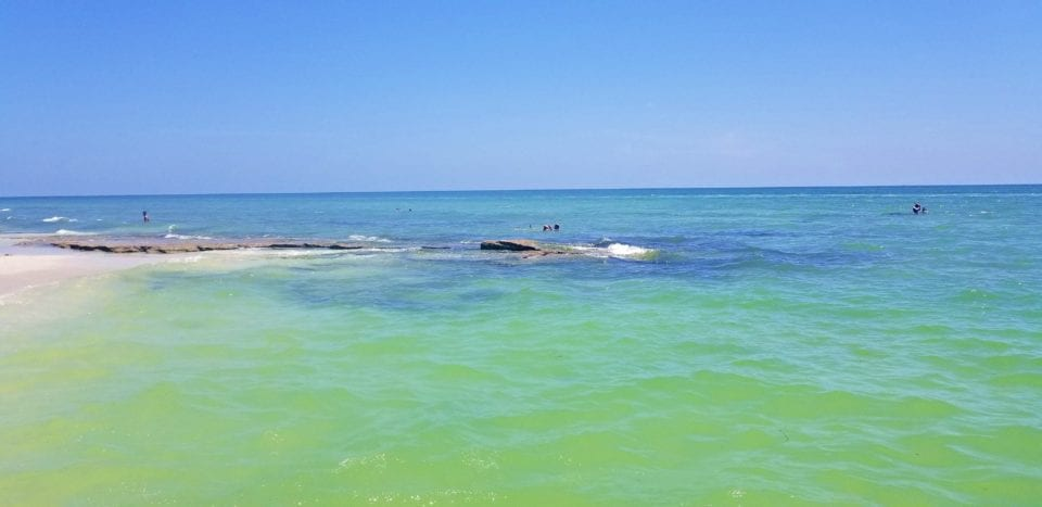 Point of Rocks snorkel spot Siesta Key