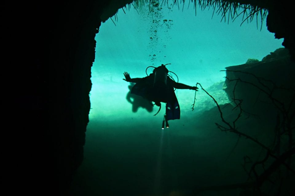 Diver Flying through La Casa Cenote
