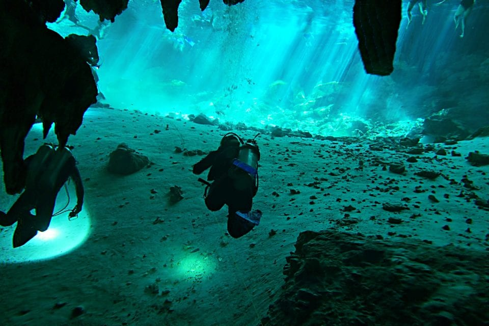 divers and snorkelers in Dos Ojos Cenote