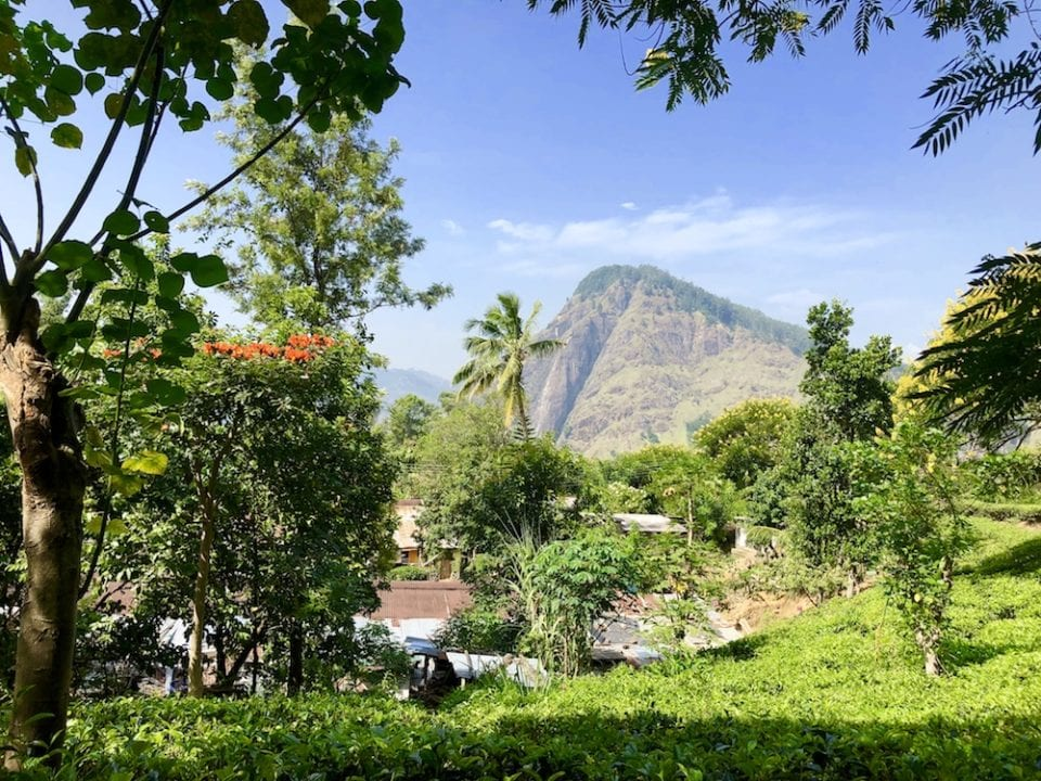 Ella picture of Sri Lankan Mountain Towns - Photo by Erin Hardie @ Down Bubble