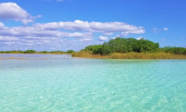 The Sian Ka'an Biosphere & Muyil Ruins- A Guided Tour to the Birthplace of Heaven