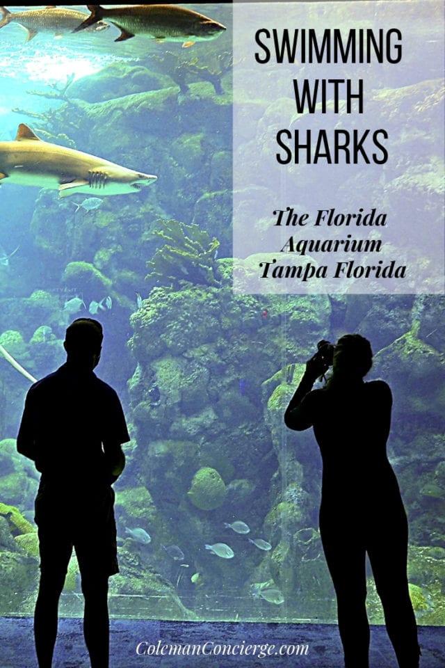 Viewing coral reef exhibit Florida Aquarium