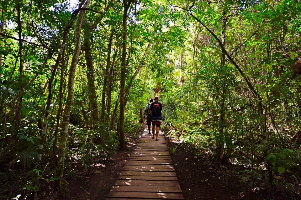 Ed and Jose Walking through Sian Kaan Biosphere