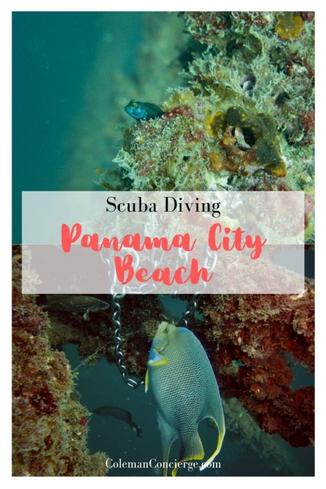 Scuba Diving in Panama City Beach Florida