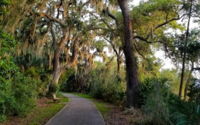 Jekyll Island Bike Trails- 5 Routes You Must Explore