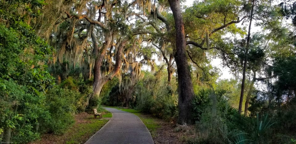 Jekyll Island bike trail