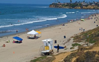 San Diego Beaches and Breweries: The Perfect Pairing